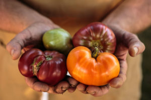 Heirloom tomatoes grown at Dustin Valette's house and used in his restaurant
